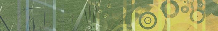 banner-3